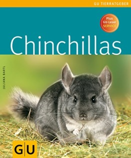 Chinchillas - 1
