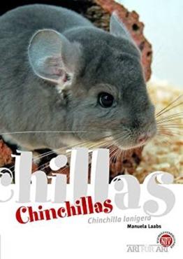 Chinchillas: Chinchilla lanigera (Art für Art: Kleinsäuger) - 1