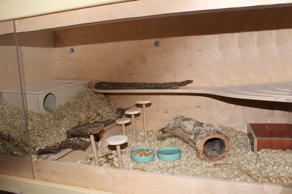 Hamsterkäfig vor der Abholung vorbereiten