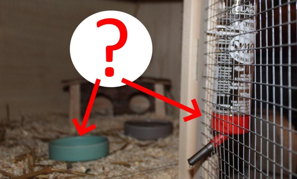 Welche Hamstertränke verwenden?