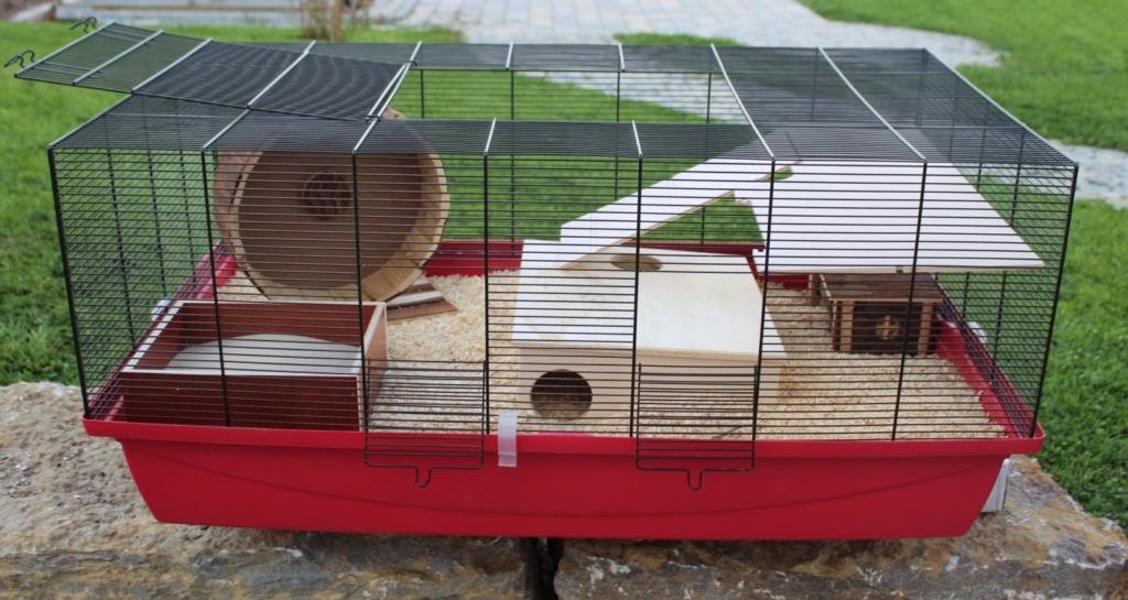 Kosten für den Hamsterkäfig