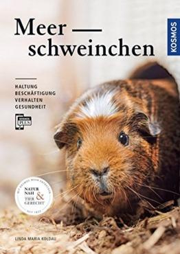 Meerschweinchen: Haltung, Beschäftigung, Verhalten und Gesundheit - 1