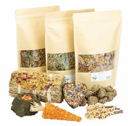 Mr. Crumble Dried Pet Food XXL Struktur-Futter-Set für Kaninchen, Meerschweinchen und Degus, getreidefrei, mit Heu und Snacks - 1