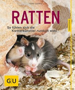 Ratten als Heimtiere, glücklich & gesund gelb 12 x 3,5 cm: So fühlen sich die Kletterkünstler rundum wohl (GU Tierratgeber) - 1