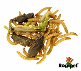 Rodipet® Insektenmix Protein Snack 50g - 1